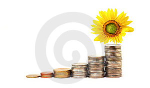Increase Your Savings Royalty Free Stock Image - Image: 19307586