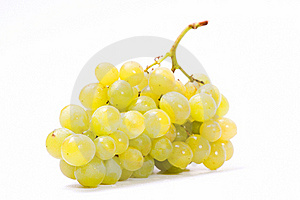 Ripen Grapes Stock Photo - Image: 19311150