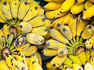 Bunch Of Ripe Bananas Stock Images - Image: 19313404