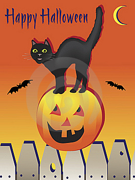 Happy Halloween Black Cat Stock Photo - Image: 19318050