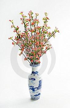 Flor De Cereja Fotos de Stock - Imagem: 19320743