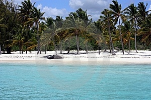 Ocean And Beach Panorama Royalty Free Stock Images - Image: 19323139