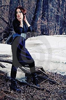 Winter Royalty Free Stock Photo - Image: 19327465