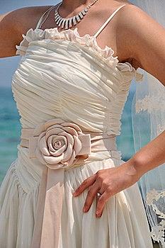 Bride In Wedding Dress Stock Photo - Image: 19328390