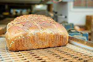 Loafs Of Bread In The Factory Royalty Free Stock Images - Image: 19331439