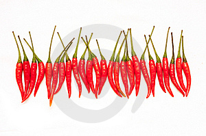 Red Chili Peppers Royalty Free Stock Image - Image: 19339956