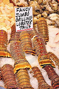 Fresh Lobster Tails Royalty Free Stock Image - Image: 19355346
