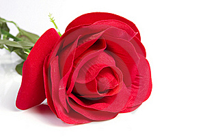 Fabric Rose Royalty Free Stock Photos - Image: 19361898