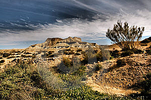 Desert View Stock Image - Image: 19368241