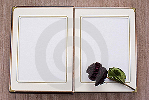 Open Old Book Royalty Free Stock Photography - Image: 19386247