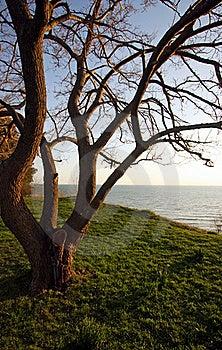 View Of Lake Huron Stock Photo - Image: 19388230