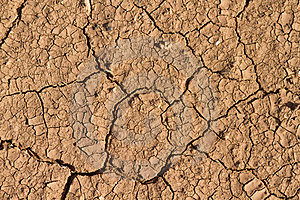 Dry Mud Texture Royalty Free Stock Photography - Image: 19394517