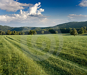 Green Meadows And Forested Hills Royalty Free Stock Photos - Image: 19398678