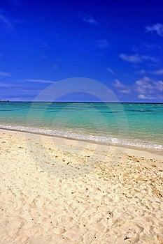 Hawaiian Beach - Oahu Free Stock Photos