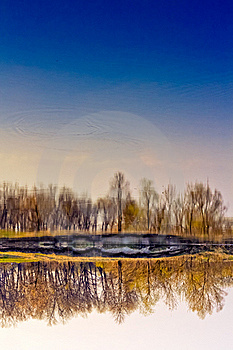 Spring Forest River With Reflection Of The Sky Royalty Free Stock Photo - Image: 19408315