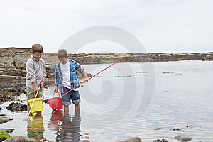 Two Boys Collecting Shells Royalty Free Stock Photography - Image: 19418417