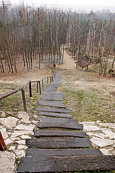 Long Stairs In Forest Royalty Free Stock Photos - Image: 19419928