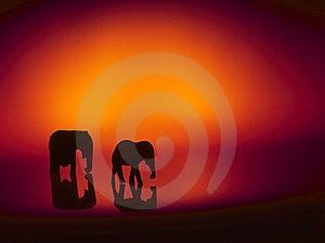 Adult Elephant Exhibit Royalty Free Stock Photos - Image: 19422788