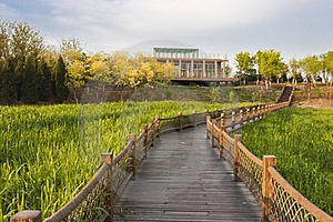 Boardwalk Across The Field Royalty Free Stock Photography - Image: 19429127