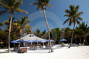Beach On Paradise Stock Image - Image: 19432991