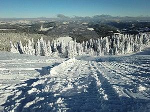 Felberg山顶 图库摄影 - 图片: 19443292