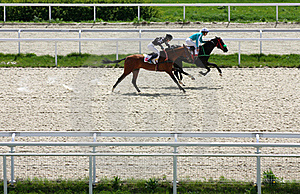 Horse Racing. Stock Photography - Image: 19444652