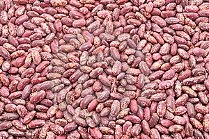 Texture Of The Beans Stock Image - Image: 19444831