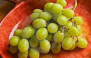 Green  Grapes Stock Photos - Image: 19447193