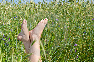 Woman Two Legs In Green Grass Field Under Blue Sky Royalty Free Stock Photo - Image: 19451655