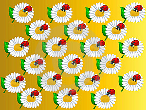 Pattern_Camomiles And Ladybirds Stock Photography - Image: 19455032