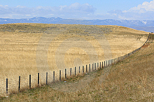 Fence Row In Eastern Wyoming Royalty Free Stock Image - Image: 19467676