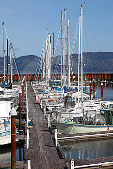 Fishing Boats & Small Yachts In A Marina. Stock Photos - Image: 19473093
