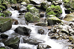 Streaming Water Stock Photo - Image: 19494890