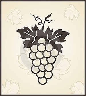 Retro Engraving Of Grapevine Stock Images - Image: 19497784