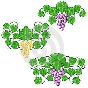Wine Elements Royalty Free Stock Photo - Image: 19507075