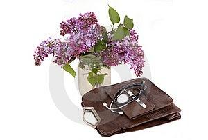 Female Bag. Stock Photos - Image: 19511273