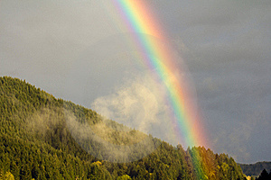 Forest Rainbow Royalty Free Stock Photography - Image: 19516387