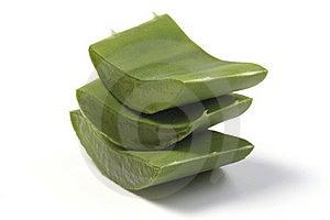 Fresh Aloe Vera Royalty Free Stock Image - Image: 19525276
