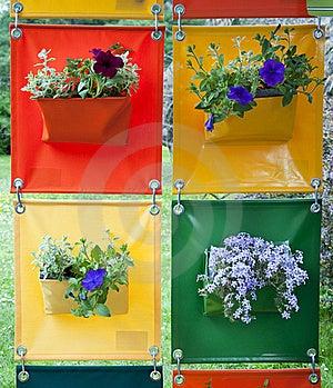 Hanging Flowers Stock Photo - Image: 19526090