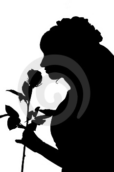 Silhouette Of Woman In Wedding Dress With Rose Royalty Free Stock Photos - Image: 19541548