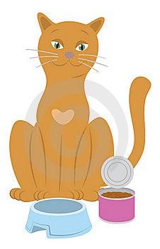 Cat Royalty Free Stock Image - Image: 19542376