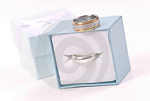Promise Rings For Her And Him Stock Photo - Image: 19566590