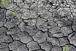 Dry Season Royalty Free Stock Image - Image: 19573266