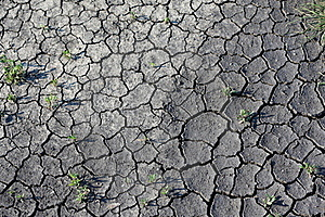 Season Of Drought Royalty Free Stock Image - Image: 19573506