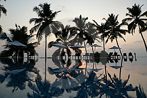 Coconut Palm Trees Reflecting In The Water Pool Royalty Free Stock Photos - Image: 19587578