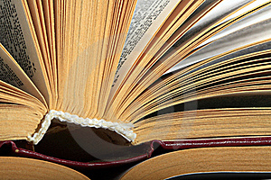 Root And Pages Stock Image - Image: 19588131