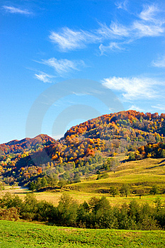 Autumn Landscape With Colorful Forest Royalty Free Stock Photography - Image: 19595397