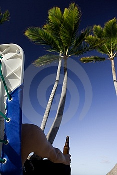 In The Shade Of Palm Tree Royalty Free Stock Photography - Image: 1969997
