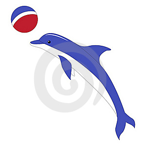 A Dolphin With A Ball Royalty Free Stock Photos - Image: 19601548