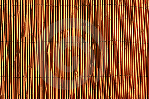 Reed Fence Stock Photos - Image: 19602793
